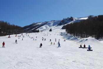 しらかば2in1スキー場のイメージ